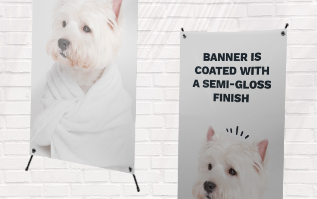 Pet Photo Banner Specifications