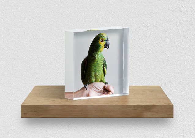Acrylic glass maximizes longevity