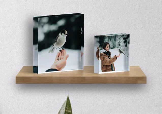 Custom Pet Acrylic Photo Blocks Make Amazing Gifts