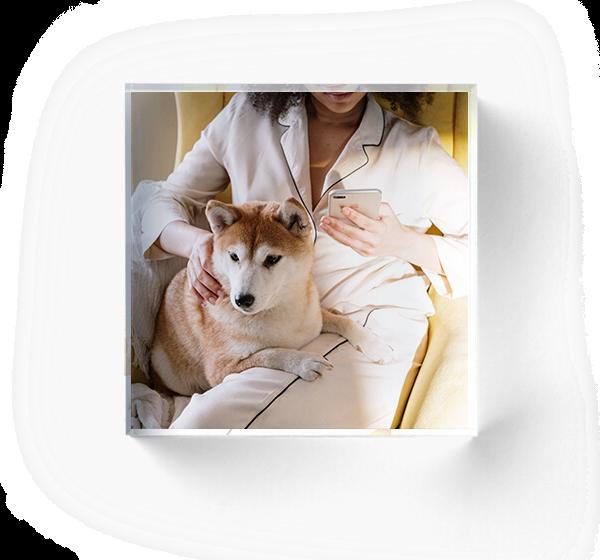 Make Lasting Memories With Custom Pet Acrylic Photo Blocks